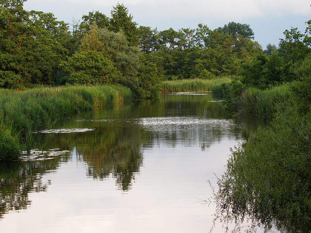 De gemeente Tynaarlo/ Provincie Drenthe is van plan een groot transferium aan te leggen in De Punt bij het entreegebied van ons dorp en in het Nationaal beek- en esdorpenlandschap Drentsche Aa. Tevens komt het geplande transferium zeer nabij het Nationaalpark Drentsche Aa en De Hondsrug UNESCO Global Geopark. Als Plaatselijk Belang Glimmen zien wij […]